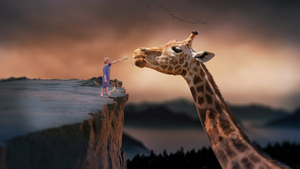 giraffe-1959110_1280